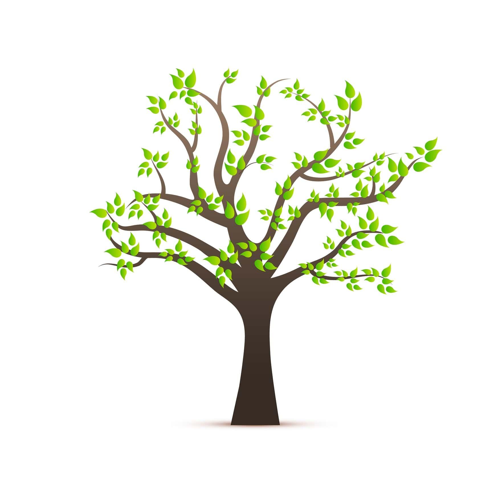Kaufen und Bäume Spenden