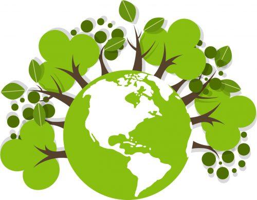 Bäume Pflanzen für den guten Zweck